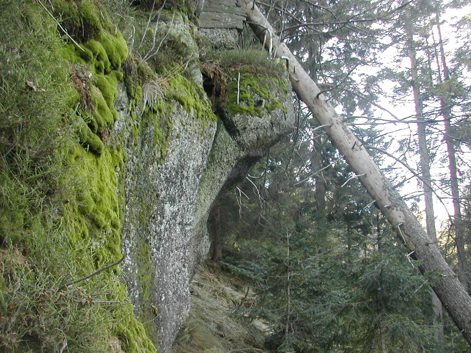 Potrójna - Przełęcz Zakocierska - Chaka pod Potrójną - Przełęcz Na Przykrej - Łamana Skała - Rozdroża pod Łamaną Skałą (Anula)