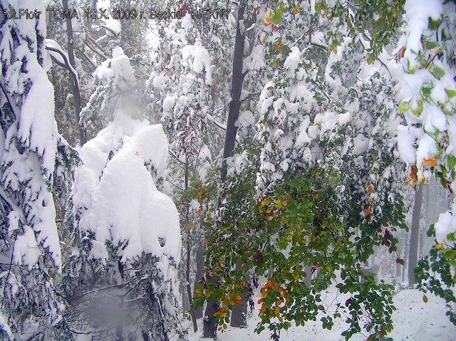 Zima w Beskidzie Małym w październiku