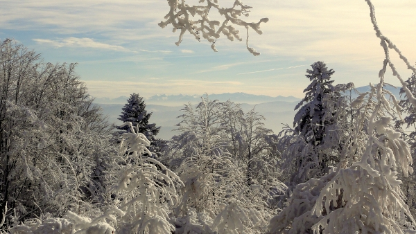 Widok na Tatry. Zdjęcie zrobione 27.01.2014 , ze szczytu, niedaleko ławeczki. Autor: Krzysztof Stanclik